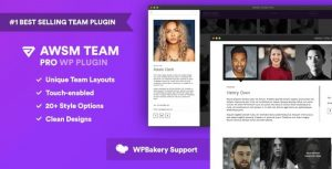 The-Team-Pro-nulled-download