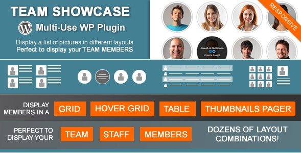 Team-Showcase-nulled-download