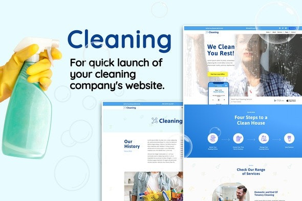 Cleaning-Nulled-Download
