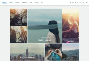 Themify-Peak-WordPress-Theme-Nulled-Download