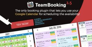 Team-Booking-WordPress-Booking-System-Nulled-Download